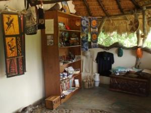 10 Curio Shop, Library 2